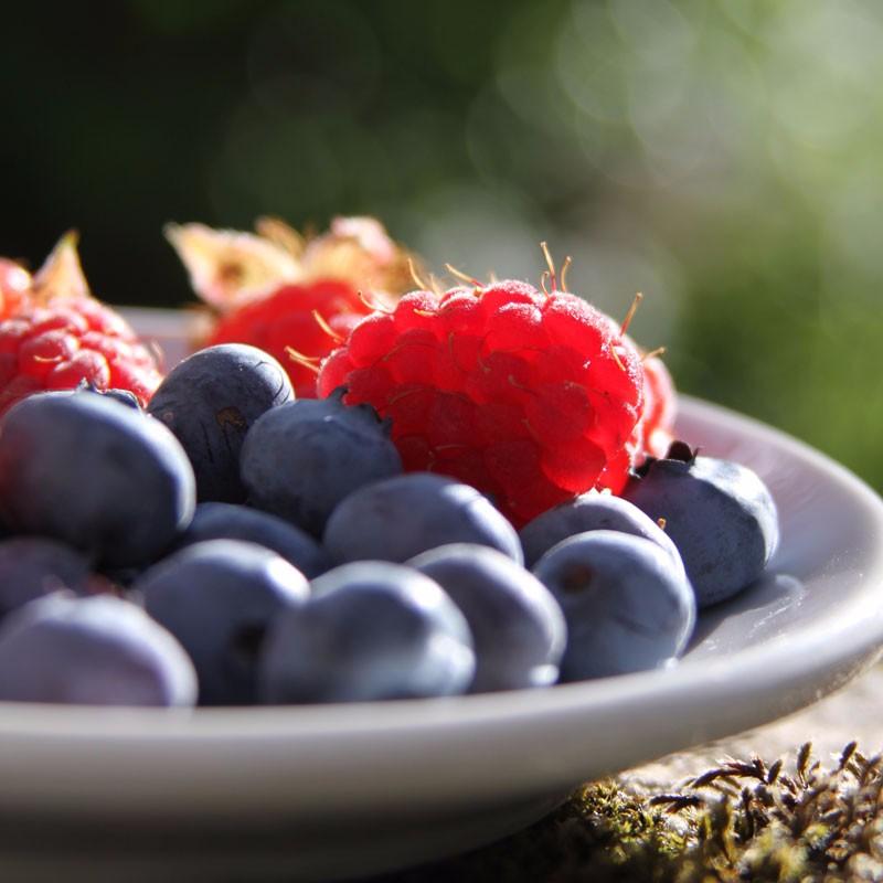 port-elgin-nutrition-nutrition-coaching